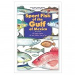 Florida Sportsmans Best - Book - Sport Fish of the Gulf of Mexico