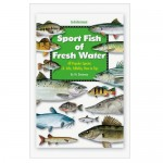 Florida Sportsmans Best - Book - Sport Fish of Fresh Water - SFR