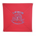 Lewis Fishing Kite - Medium Wind - 100M