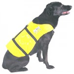FLOTATION PET VEST